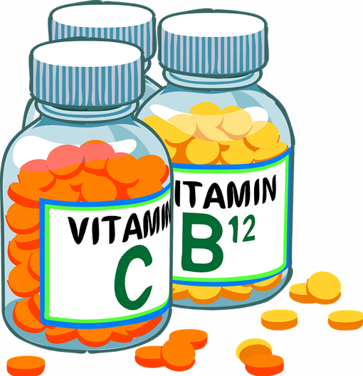 What Are The Best Vitamins for Dogs
