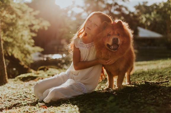 Best Pet Health Supplements USA